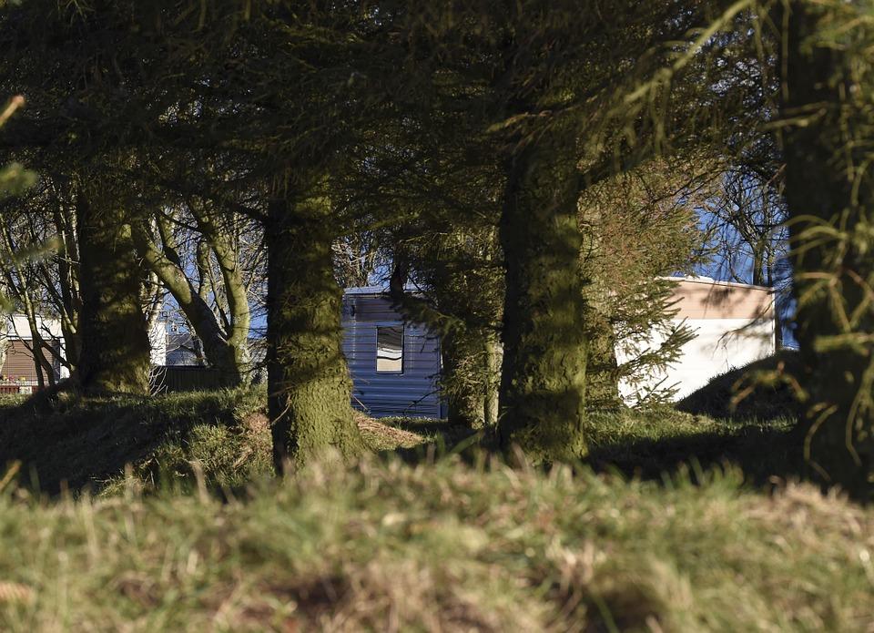 Domek za lesem