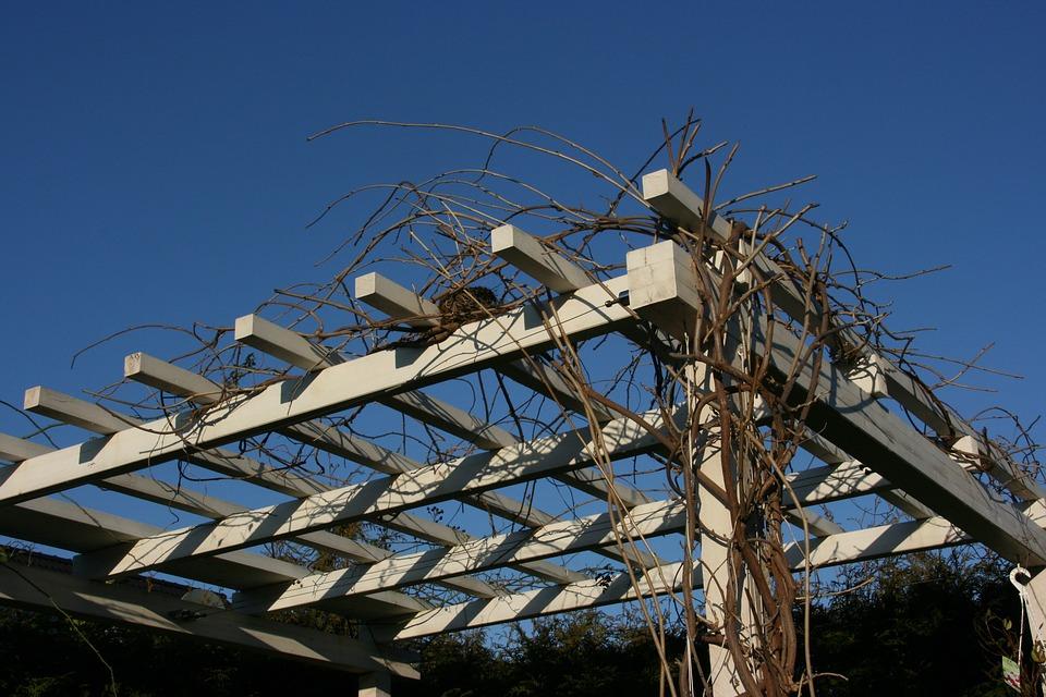 Dřevěná pergola zajistí na vlastní zahradě dostatek soukromí