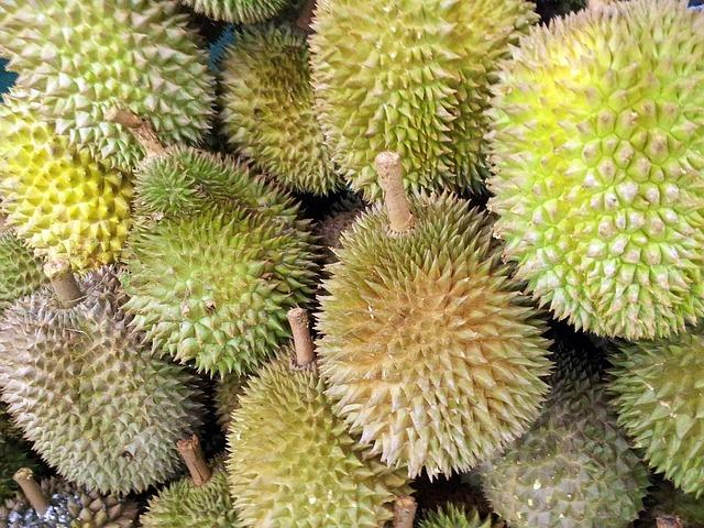 plody durianu