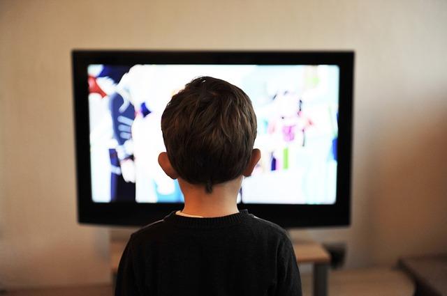 Televizní divák