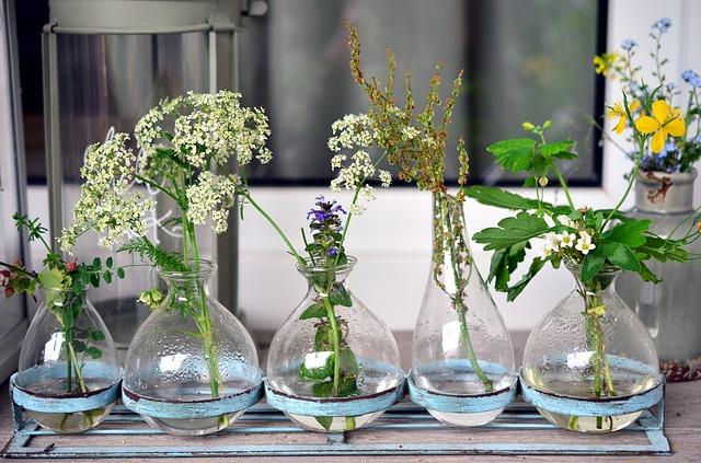 bylinky ve skle