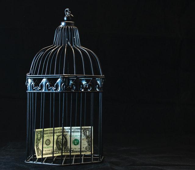 bankovka v kleci na ptáky